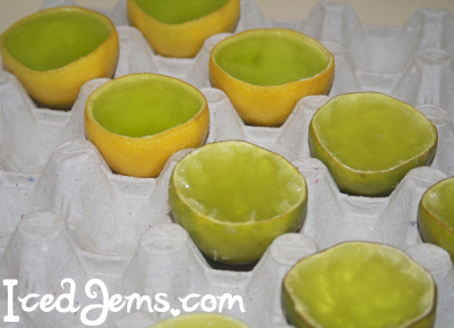 Lemon Lime Jelly Slices