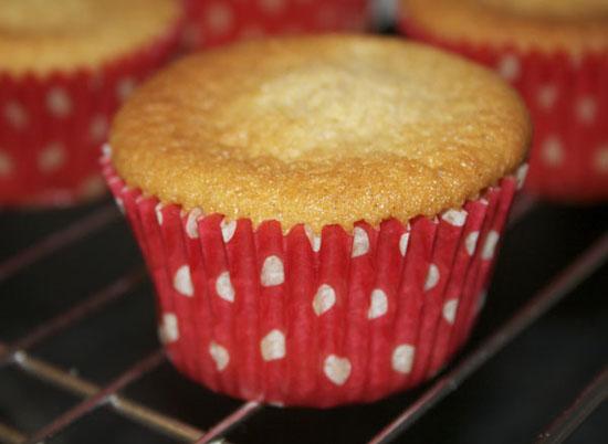Cinnamon Sponge Cupcakes