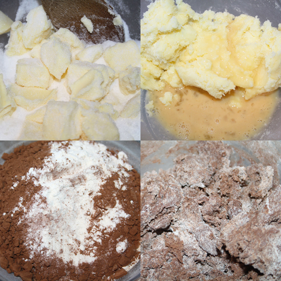 Chocolate Sugar Cookie Dough